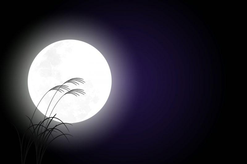 仲秋の名月とすすき