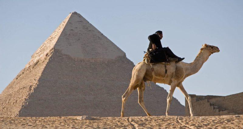 ピラミッドとラクダ