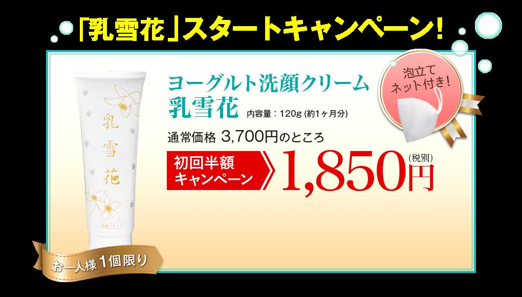 乳雪花の値段