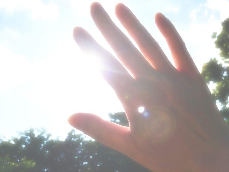 日航がまぶしい画像