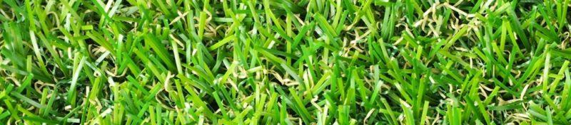 ゴルフ場の芝生