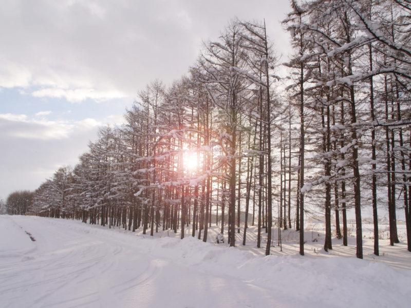 雪景色と太陽