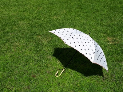 芝生に置かれた日傘