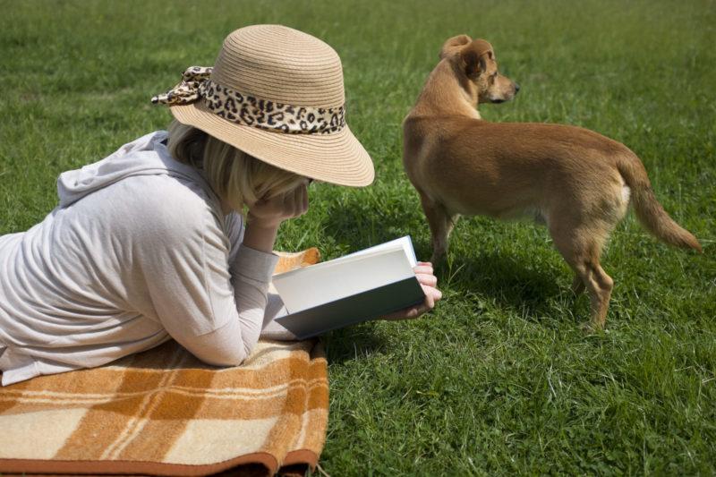 帽子に被っている女性が本を読んでいる様子(犬)