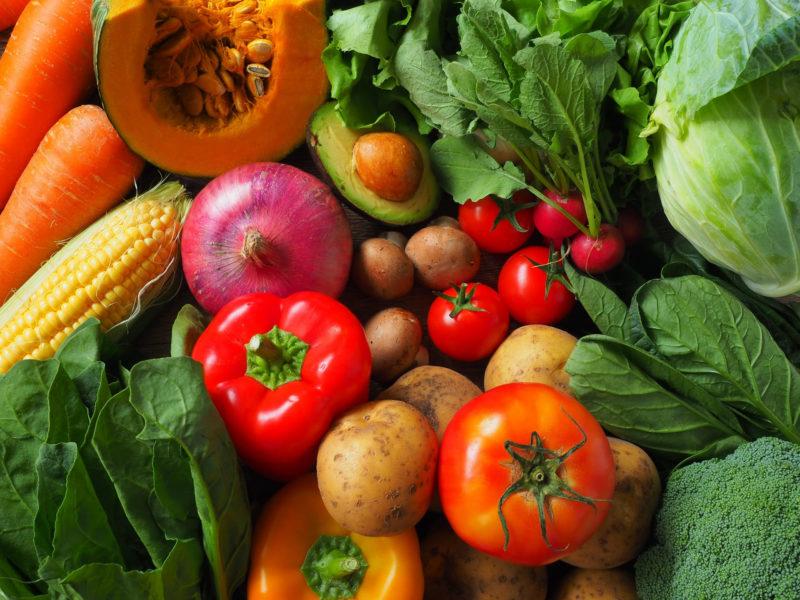 色とりどりの野菜が沢山