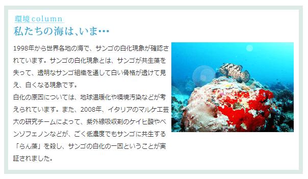 サンゴ礁画像