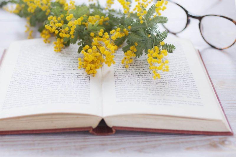 本とメガネとミモザの花
