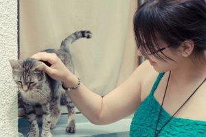 猫を触っている緑色のワンピースの女性