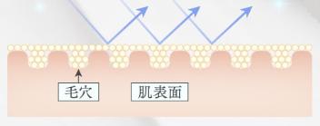 スノード メタクリル酸メチルクロスポリマーのイメージ