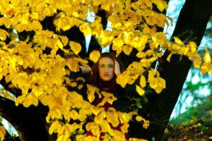 イチョウの葉を眺めている女性