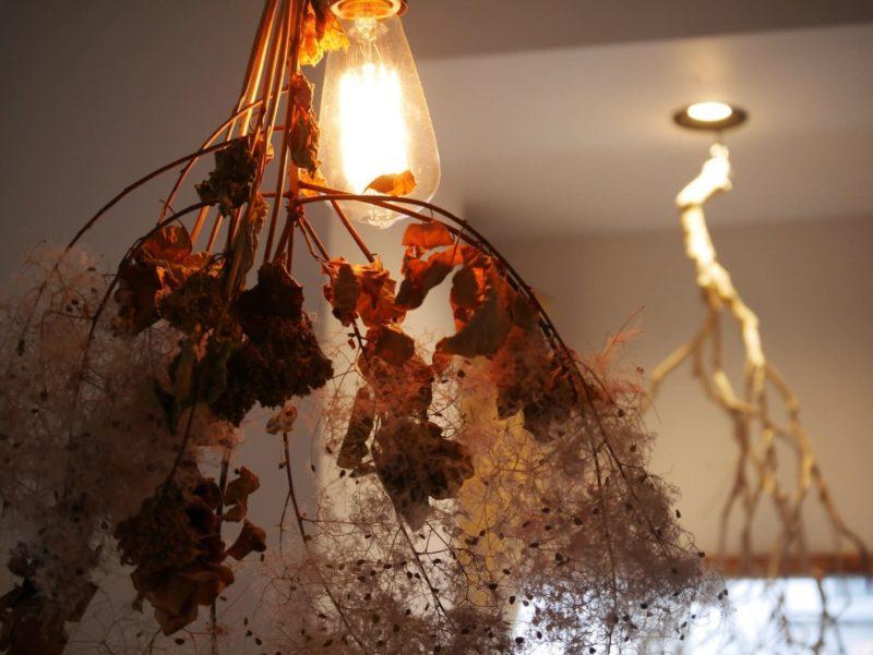 電球に照らされているドライフラワー