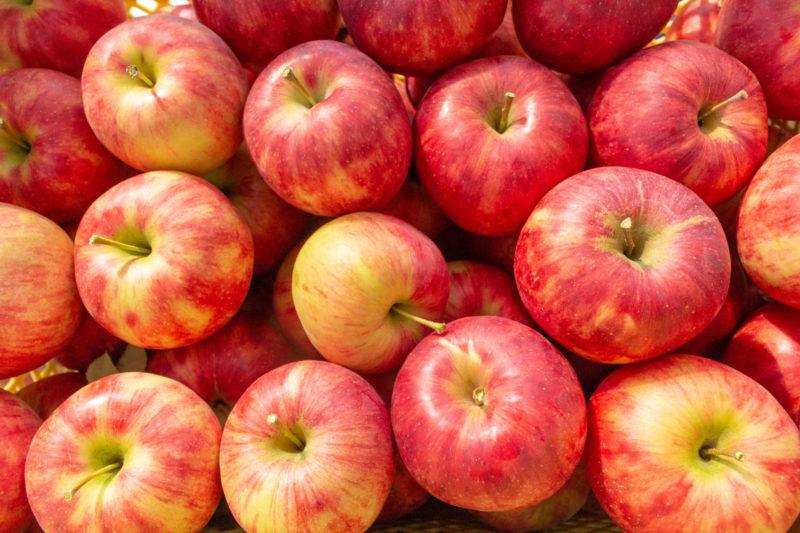 たくさん敷き詰められているおいしそうなリンゴ達