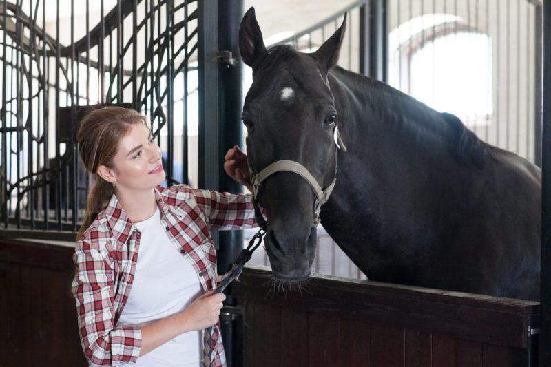 馬と触れ合っている外国人女性