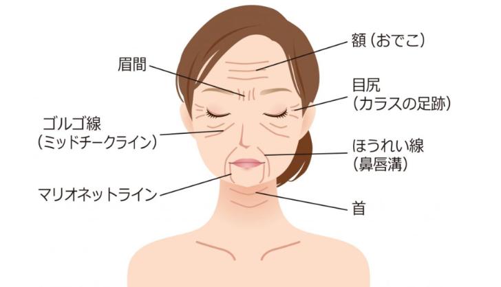 シンエイク女性顔画像