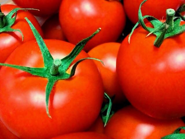トマトの束