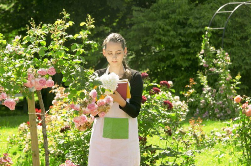 薔薇を前に熱心に研究をしている女性