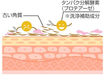 酵素パックポイント5