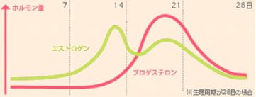 グラフ画像1