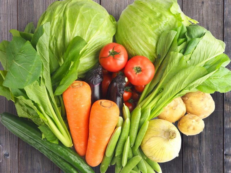 床に並べられているキャベツやニンジン、トマトなどの野菜
