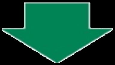 スノーライトEX矢印緑