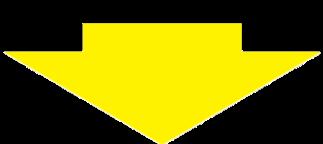 サーモン矢印