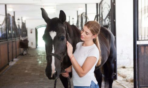 しっかりとした目の馬を女の子がかわいがっている写真