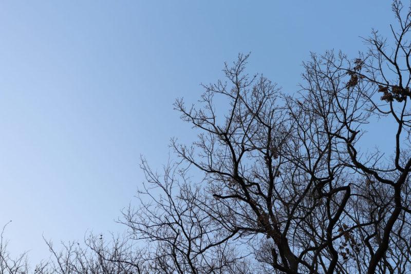 足の乾燥の原因を作る冬