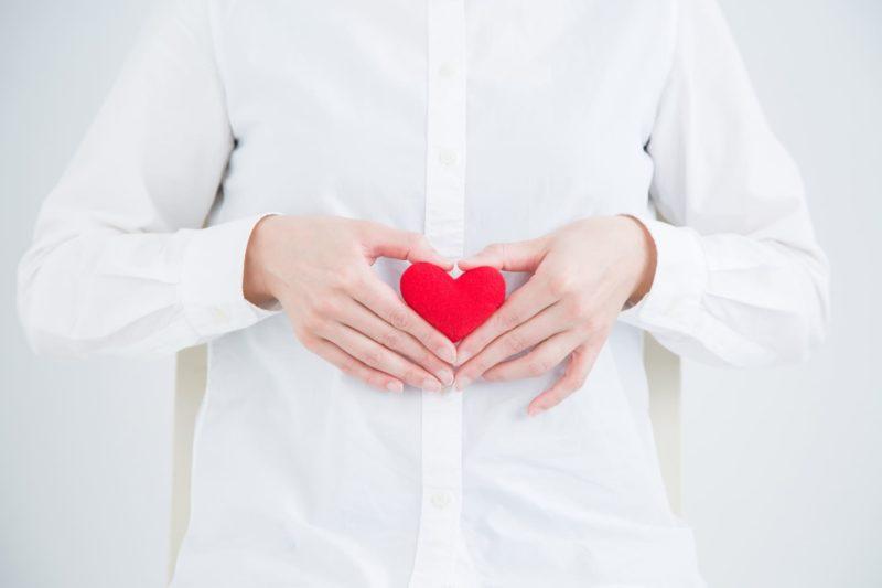 コラーゲン繊維とは 腎臓
