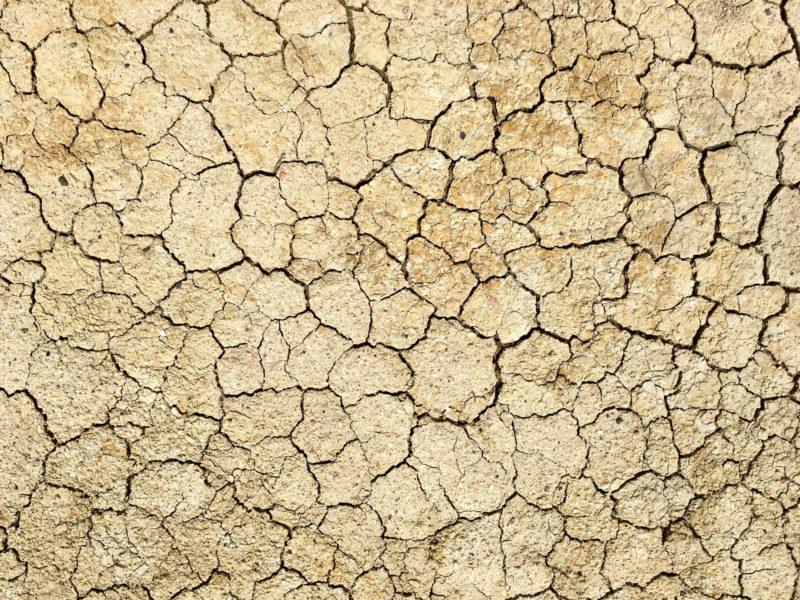 乾燥肌の原因や状態は年齢や性別で違うの? 乾燥