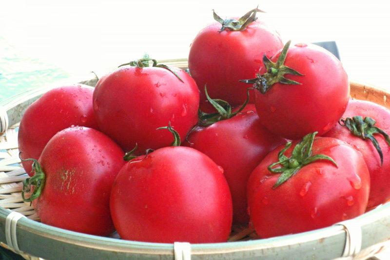 マスクをすることによって肌にどのような影響があるの? トマト