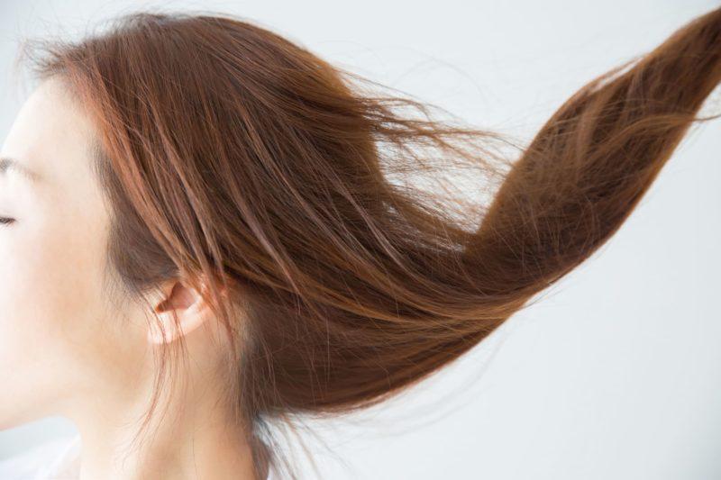 長い髪をなびかせる女性の横顔