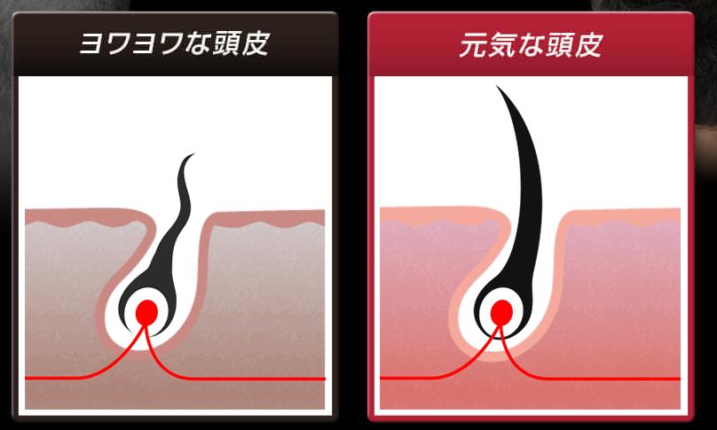 グロウジェル 髪の毛比較